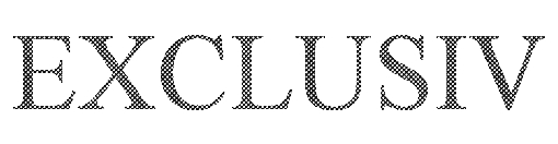EXCLUSIV_Logo